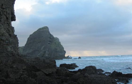 New Zealand, 2011
