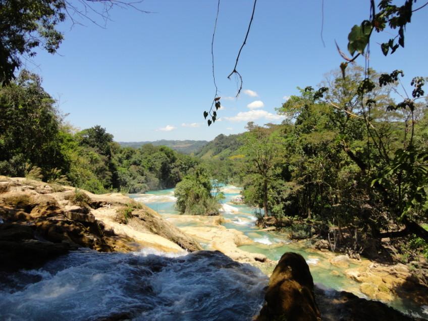 Palenque – 2012