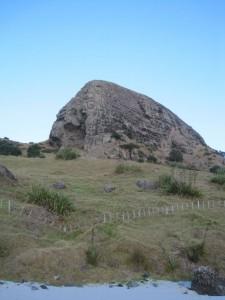 2010-New-Zealand-21