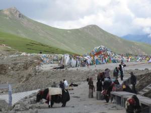 2010-Tibet-27