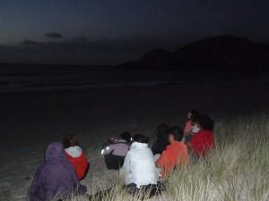 2012-New-Zealand-11