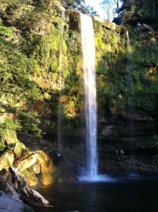 2012-Palenque-07